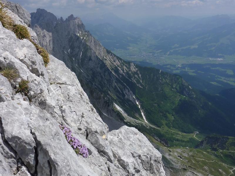 Klettersteig Wilder Kaiser : Alpenstieg ihr bergtourenexperte